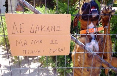 Οι πιο αστείες πινακίδες... από την Κρήτη! (φωτορεπορτάζ)
