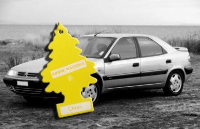 Φτιάξτε εύκολα και υγιεινά το δικό σας αποσμητικό αυτοκινήτου
