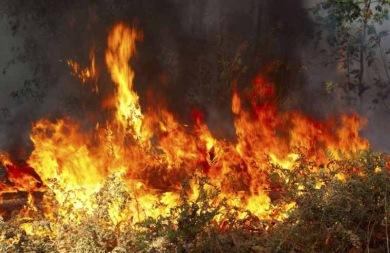 Συνελήφθη 65χρονος για πυρκαγιά στο Καστρί